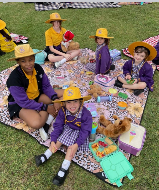 Foundation and Year 6 Buddies Teddy Bears Picnic